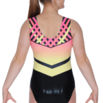 firefly-ombre-print-sleeveless-leotard-p4026-119718_image